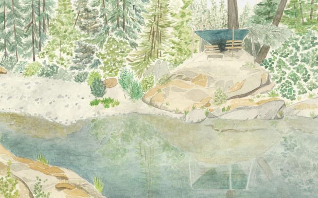 Illustration: Cathy Eliot
