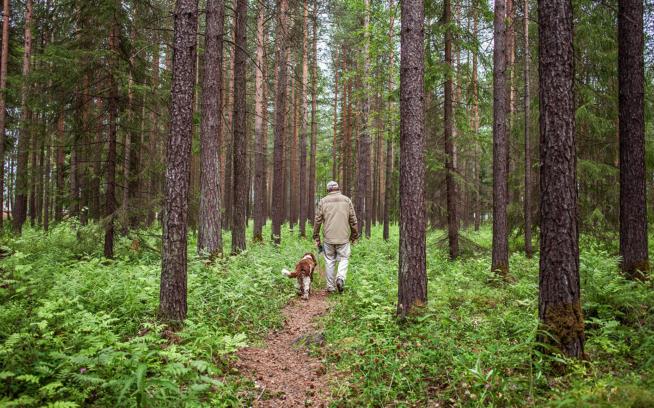 Photo: Håkan Stenlund