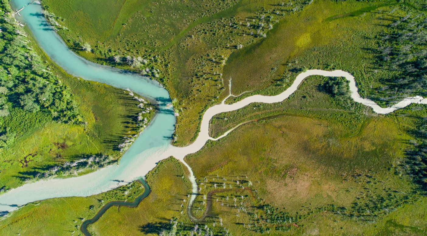 Pristine tributaries of the Chilkat River are threatened by the Palmer Project because sulfide mines produce toxic sludge that must be kept out of waterways to avoid devastating the ecosystem. Photo: Connor Gallagher
