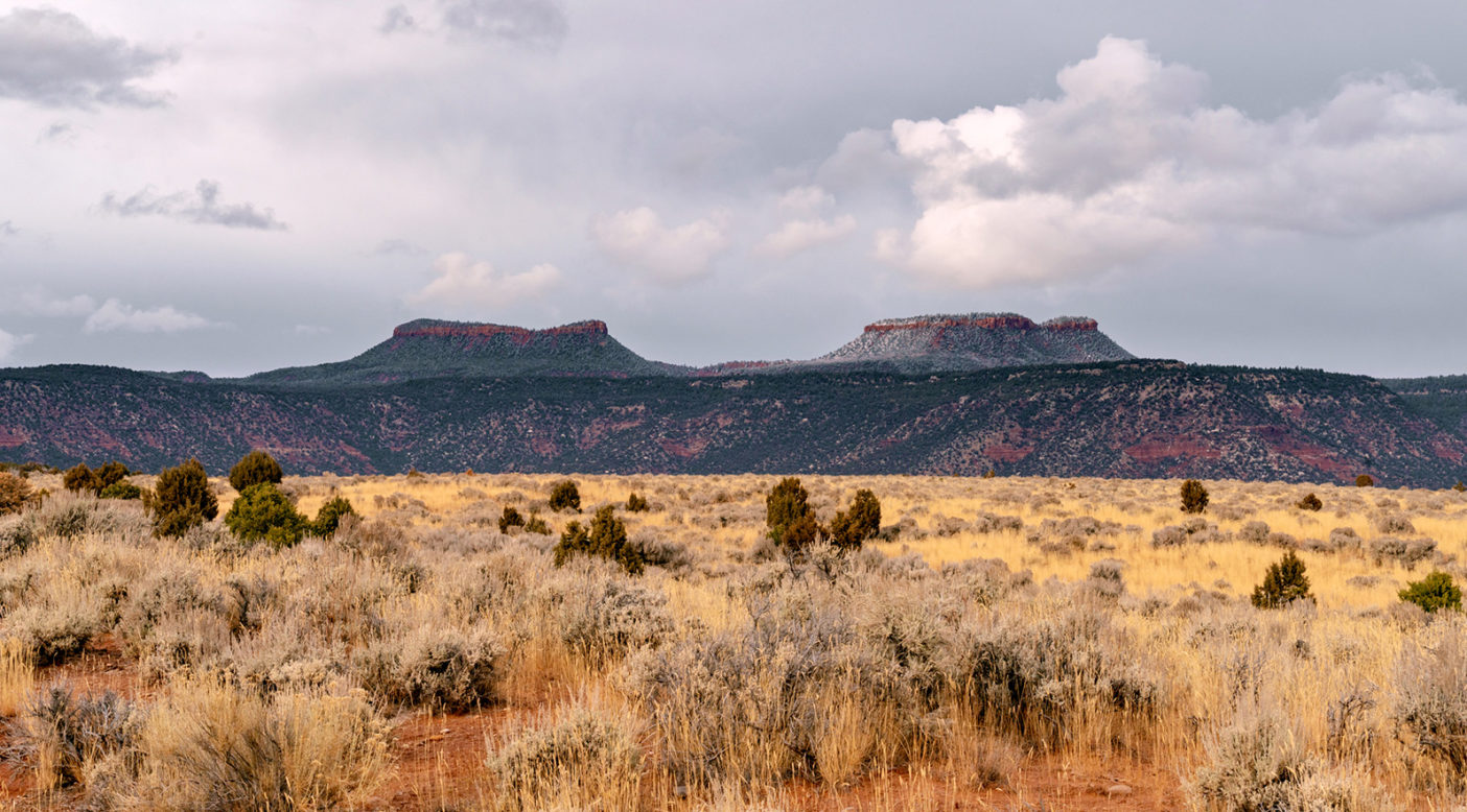 These buttes are named for their close resemblance to the ears of a Bear poking its head above the piñon-juniper forests and canyons that adorn the Cedar Mesa, Utah. Photo: Michael Estrada
